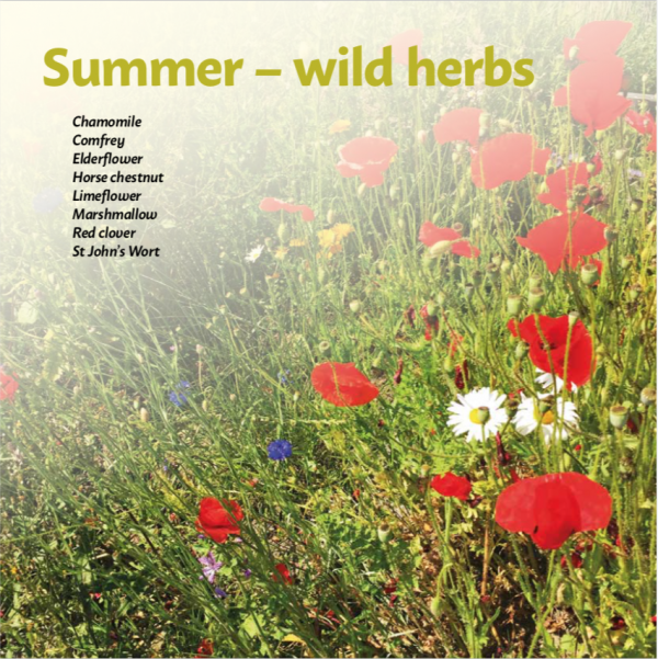 Title Page from Summer wild herbs in Vital Skincare by Laura Pardoe