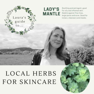 Lady's Mantle for skincare video