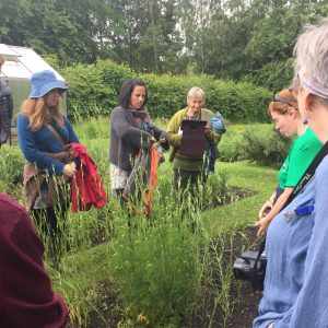 Weleda tincture garden